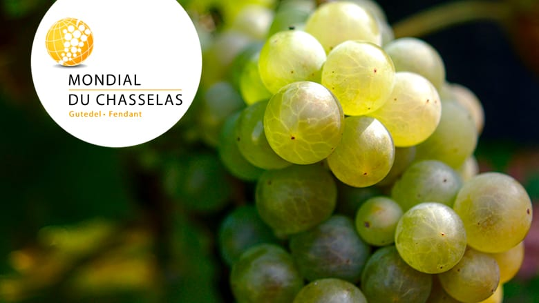 Concours mondial chasselas